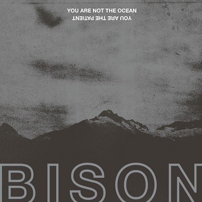 Bison – You Are Not The Ocean You Are The Patient